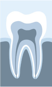 When's the last time you visited your preventive dentist in Kent?